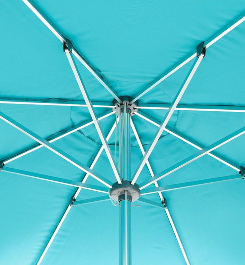 baleine de parasol