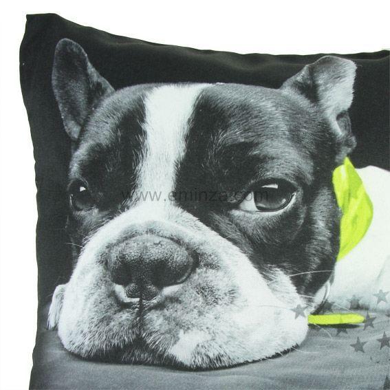 housse de coussin chien vert anis coussin et housse de coussin eminza. Black Bedroom Furniture Sets. Home Design Ideas