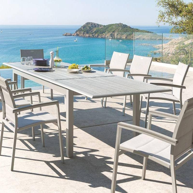 salon de jardin azua composite gris silver mat 8 12 personnes salon de jardin eminza. Black Bedroom Furniture Sets. Home Design Ideas