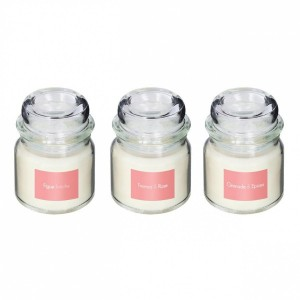 Lot de 3 bougies parfumées Isabel Figue