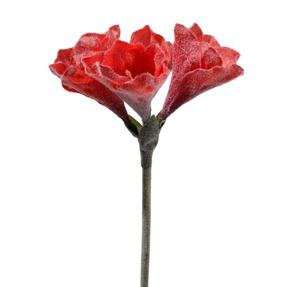 Image Fleur Noel.Fleur De Noel Sur Tige Miramas Rouge