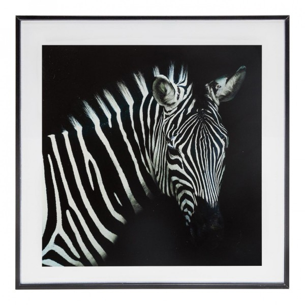 Photo Encadree 28x28 Zebre Noir Et Blanc Decoration Murale Eminza