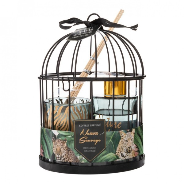 images/product/600/072/1/072185/coffret-cage-diff-bougie-lola-1_72185_2