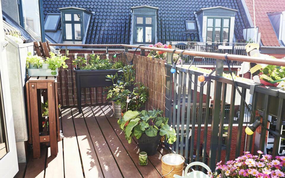 balcon décoré avec des fleurs et des plantes